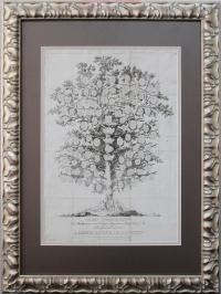 Старинная гравюра составленная известнейшим в свое время ист
